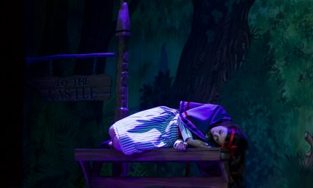 Norwich Eye reviews Sleeping Beauty at Norwich Theatre Royal