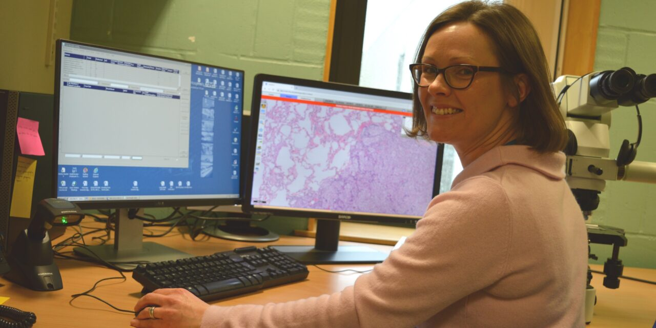 First steps towards a digital histopathology service