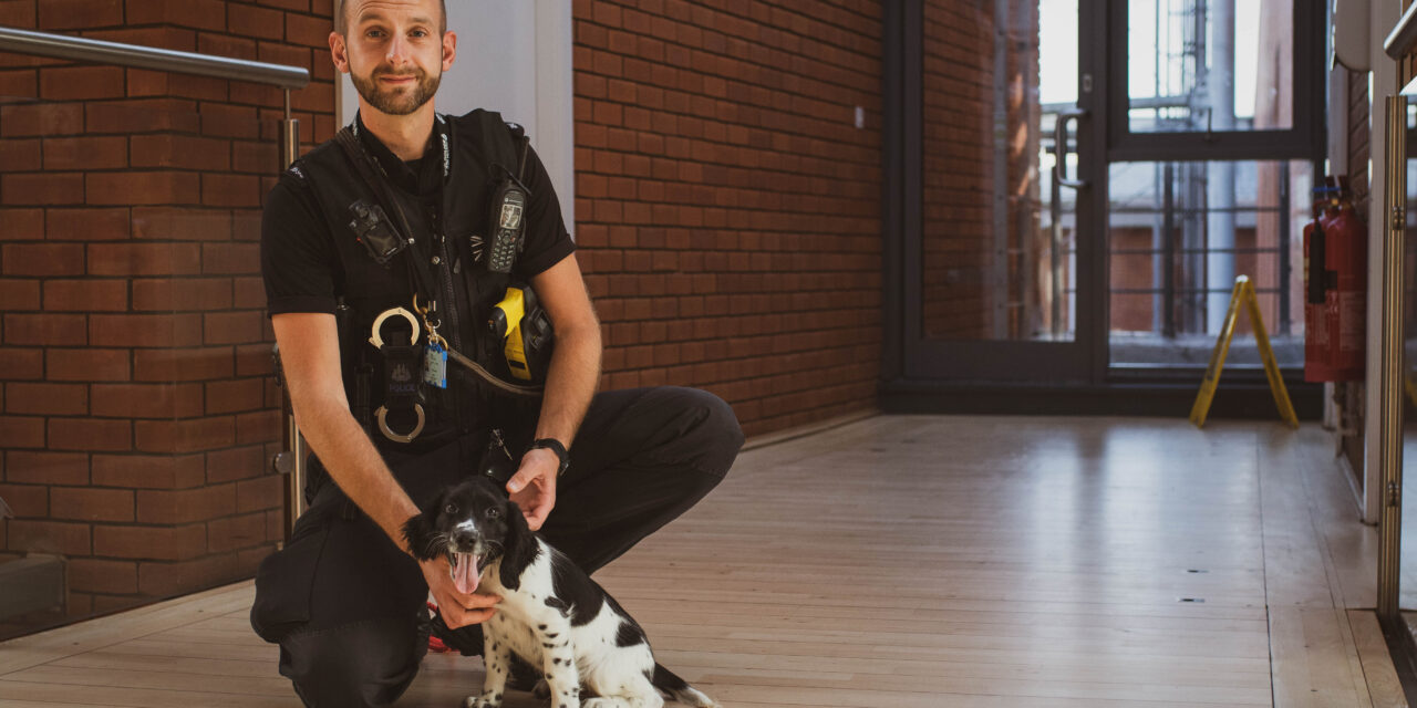 Norfolk & Suffolk Police get two new four-legged recruits