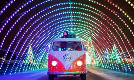 It Is All About Elf And Safety. Covid-Secure Drive-Thru Santa's Grotto Comes To Norwich