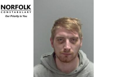 Man jailed for serial abuse on partners – Norwich