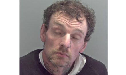 Man pleads guilty to murdering Daniel Littlewood