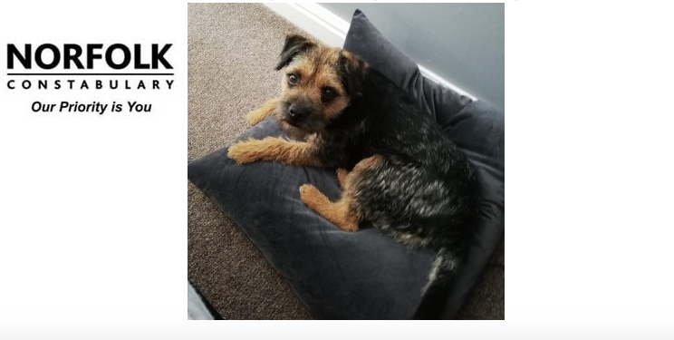 Can you help find Arthur?